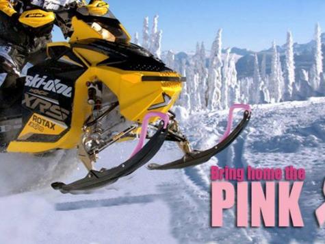 Todd Palin's Iron Dog Team Raising Money For Breast Cancer