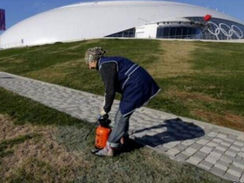 Sochi 2014: Woman Caught Spray Painting Brown Grass Green