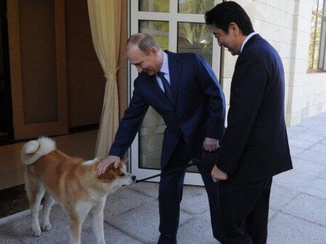 Putin Brings Dog to Meet with Japanese Prime Minister