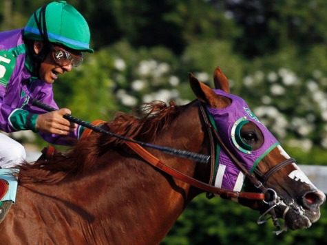 Game On! California Chrome Can Wear Nasal Strips for Triple Crown Bid
