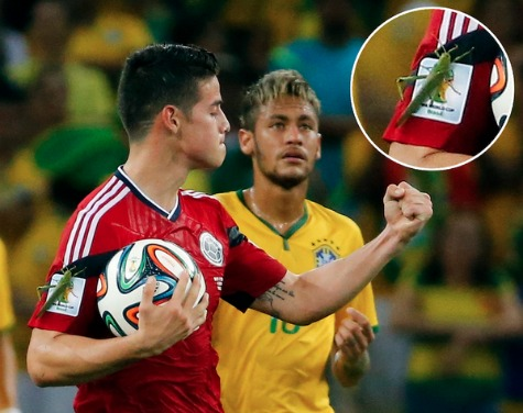 Giant Insect Lands on James Rodriguez During Goal Celebration