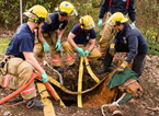 Horse Rescued From Septic Tank
