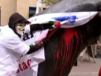 Occupy Frankfurt Stages 'Bull Slaughter' In Front Of Stock Exchange