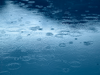 Man Fined For Collecting Rainwater On His Property