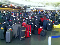 Airlines Collect $1.7 Billion In Baggage Fees In Six Months