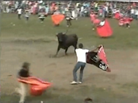 Crowds Gored at Colombia Bullfight