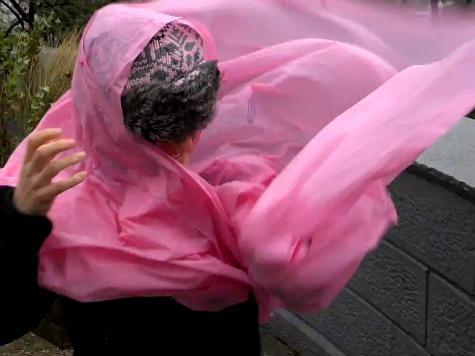 'Annoying' Hurricane Sandy Wreaks Havoc on Woman's Poncho
