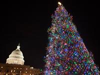 Boehner Lights Christmas Tree At Capitol