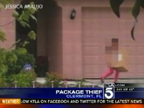 8-Year-Old Girl Steals Christmas Packages