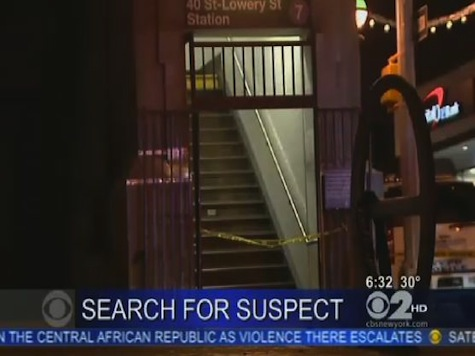 NYC Police Seek Unidentified Woman In Second Subway-Push Murder