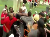 Pro-Bowl Players Stop To Watch Brawl In The Stands
