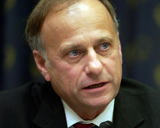 Steve King Smacks Down Agriculture Sec Over Sequester