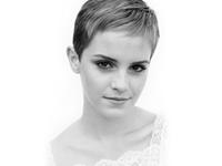 Emma Watson Turns Down 'Cinderella' Role