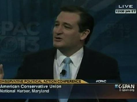 Ted Cruz: Palin Drives Media 'Bat-Crap' Crazy