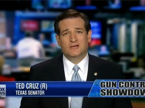 Ted Cruz: Background Check Goal a 'Federal List of Every Gun Owner in America'