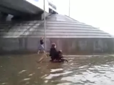 Russian Dog Pushes Owner in Wheelchair Through Flooded Street