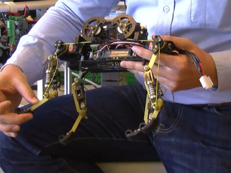 WATCH: Robot Keeps Balance Like Cats
