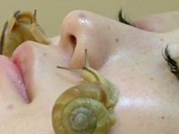 Live Snails Crawl on Faces in Crazy Beauty Treatment