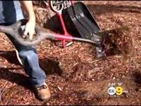 Man Invents Ergonomic Shovel