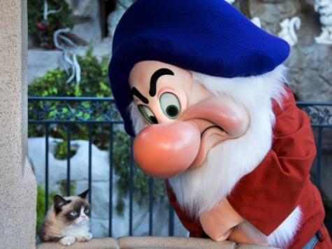 Grumpy Cat Meets Grumpy Dwarf at Disneyland