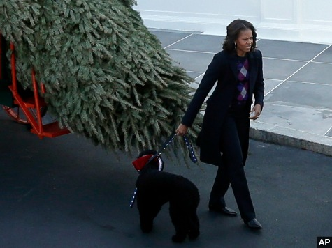 Michelle Obama: Tree 'Best Part' of Holidays