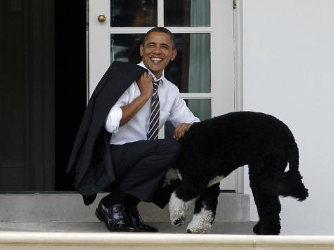 CNN's Castellanos: Obama's SOTU Speech 'A Lot Like Sex'