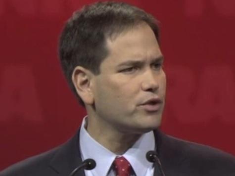 Rubio Mocks MSNBC, Criticizes Media, Entertainment, Obama for Attacks on 2nd Amendment