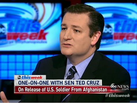 Ted Cruz Slams Hillary Clinton: She's 'All Politics, All the Time'