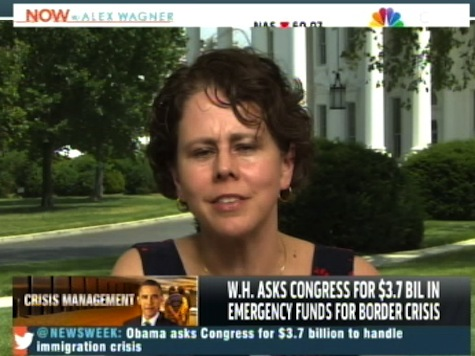 MSNBC's Wagner Grills WH Official Over Obama's 'Refusal' to Visit Border
