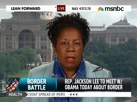 Sheila Jackson Lee: 'I Disagree that Our Border Is in Devastating Condition'