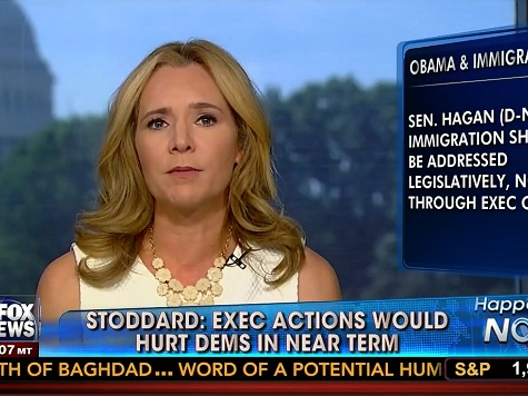 Stoddard: Dem Senate Candidates Have to Criticize Executive Amnesty 'Vehemently'