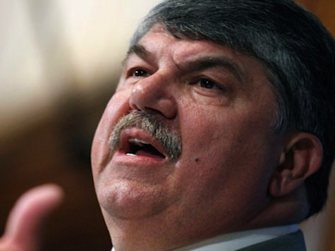Trumka: Obama's 'Bold' Amnesty Will Win Midterms for Dems