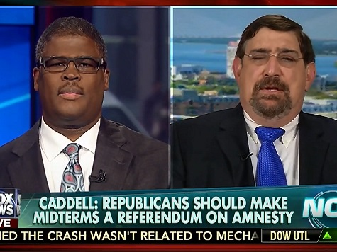 Caddell: Republicans Are 'Stupid Party' for Not Running Against Amnesty