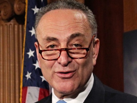 Schumer: Dems Will Keep the Senate