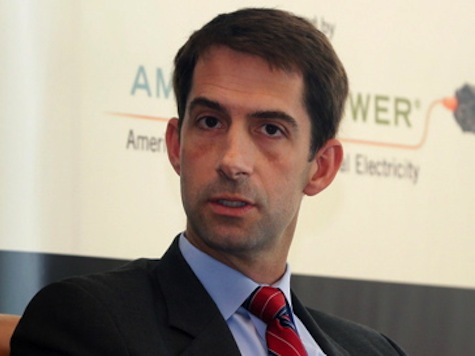 Chuck Todd Suggests GOP Senator-Elect Tom Cotton Fear-Mongering on Immigration