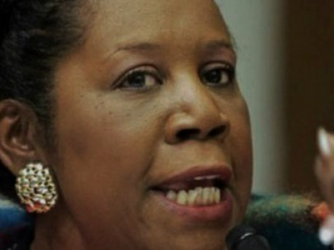 Rep. Sheila Jackson Lee Wants Grants for Jobless