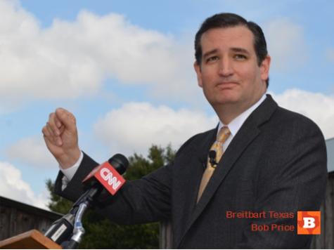 Sen Cruz Challenges Chairman Menendez on Forming Benghazi Committee