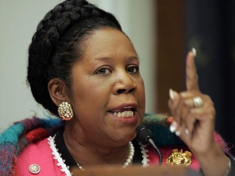 Border is 'Under Control,' Says Sheila Jackson Lee