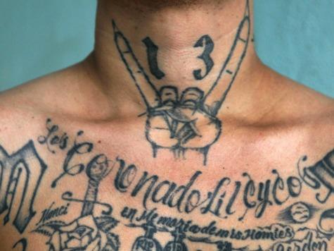 MS-13 Gang Member Illegal Alien Arrested in Texas