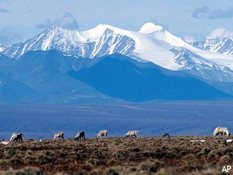 Feds Fly Unaccompanied Minors to Alaska