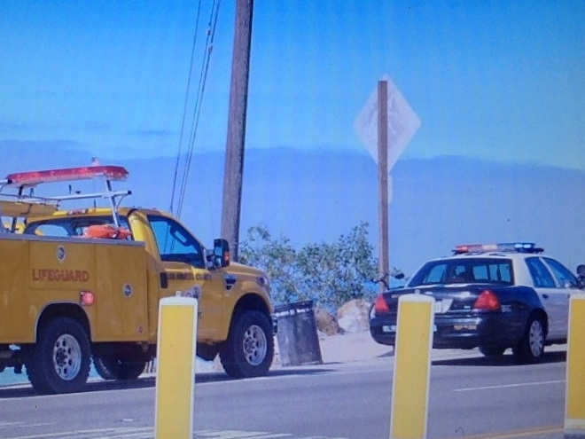 'Drugged' Man Shuts Down Pacific Coast Highway, Plunges Into Sea