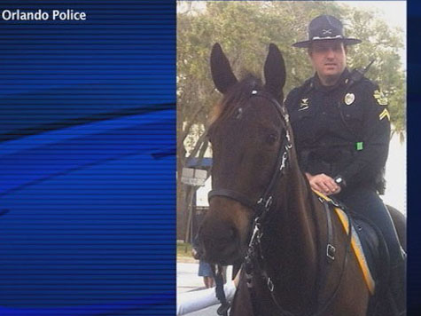 """Man Arrested For Punching Police Horse Name """"Mr. George"""""""