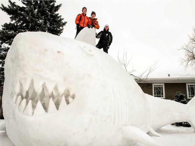 Photo: Minnesota Brothers Create 16-Foot 'Snow Shark'