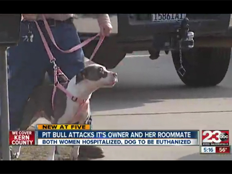 Woman Attacked By Pit Bull During Seizure