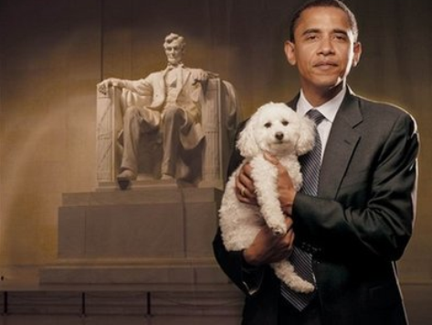The Power of New Media: Obama Ate a Dog